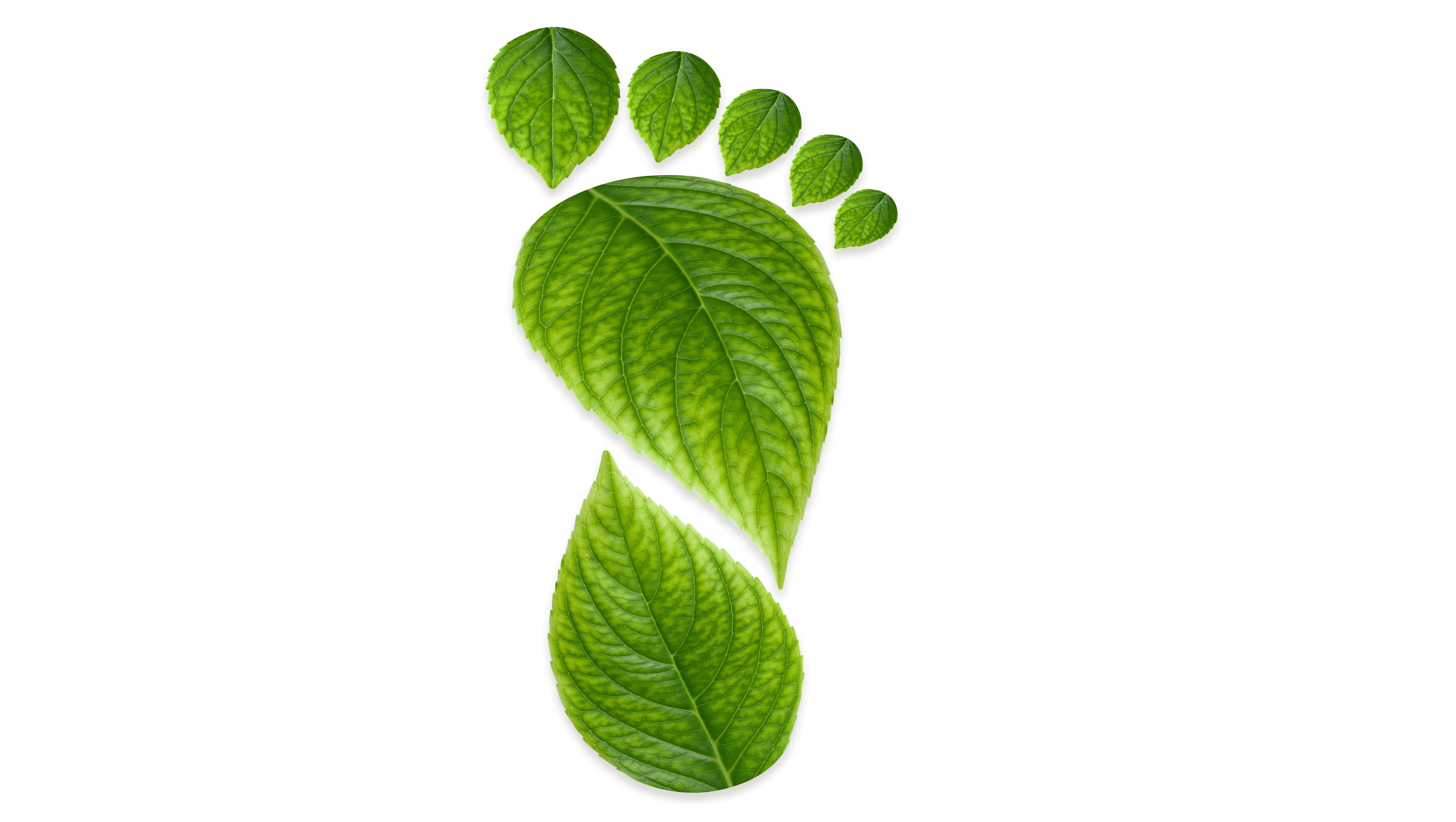Onze groene voetafdruk